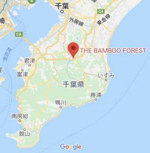 THE BAMBOO FORESTの地図