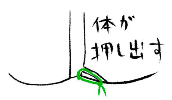 シートン法4
